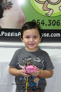 Boy with a marmoset monkey