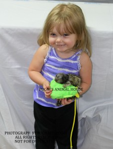 Young girl with Baby Marmoset Monkey