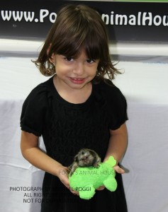 Girl holding a pygmy Marmoset