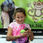 Little girl with baby Marmoset