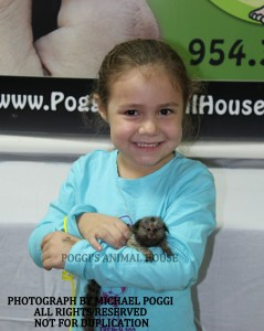 Little girl with baby Marmoset Monkey