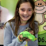 Girl holding a Marmoset